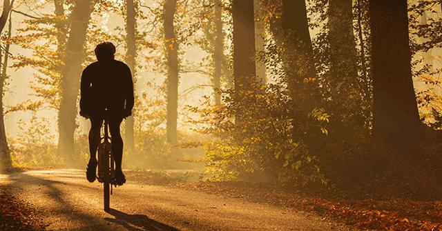 Radsport Weichberger Trekkingbikes