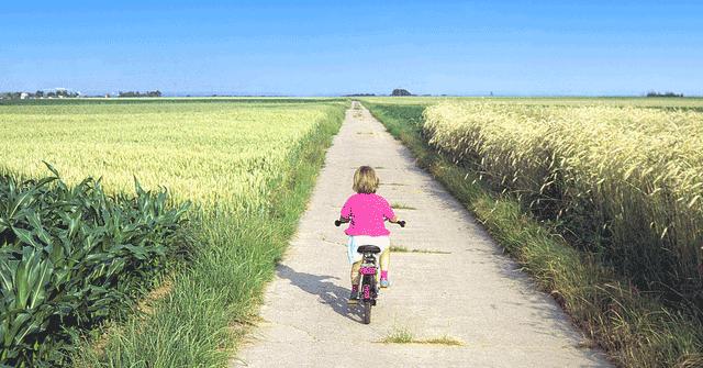 Radsport Weichberger Kinderr?der